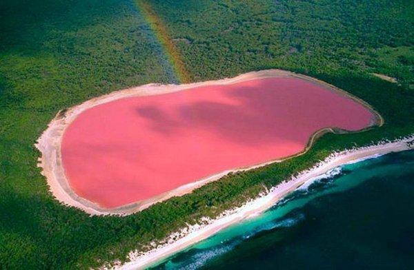 Возможно, так выглядели бы озера Марса, если б на красной планете была вода. Натрон покрыт коркой соли, несколько раз в год приобретающей красный цвет. На поверхности этого ядовитого щелочного озера заметны сюрреалистического вида воронки. Вода здесь опасна для всего живого, и скелеты зверей и птиц на берегах служат тому доказательством. Удивительно, но один‑единственный вид чувствует себя здесь весьма вольготно — это малые фламинго, которые гуляют там и сям по зловещим красным водам. Отдельных экскурсий к озеру Натрон нет, но оно обычно включается в тур к вулкану Олдоиньо‑Ленгаи, расположенному поблизости. Приехать сюда можно и самостоятельно, арендовав джип в городке Аруша.