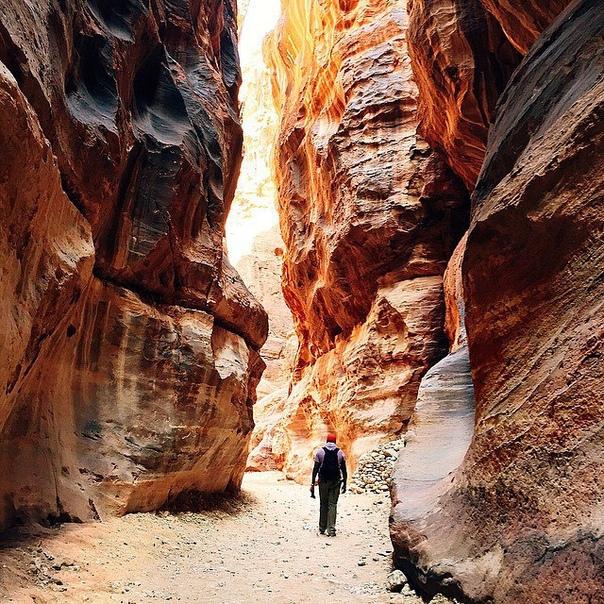 Тур в Иорданию на 4 ночи с завтраками за 10200 с человека в марте