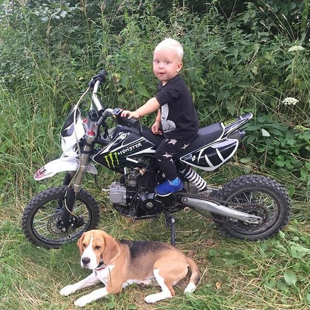 Denis Shashkin: Чё? Ни чё! Ну и сё!!.... (Просто выражение лица моего сына меня убило))) #байкеры #собака #мотоцикл #банда #достали