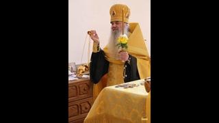 Отец Серафим (Лаврик) Святогорской Лавры (фильм - 6)