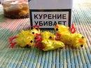 Личный фотоальбом Сергея Захарьева