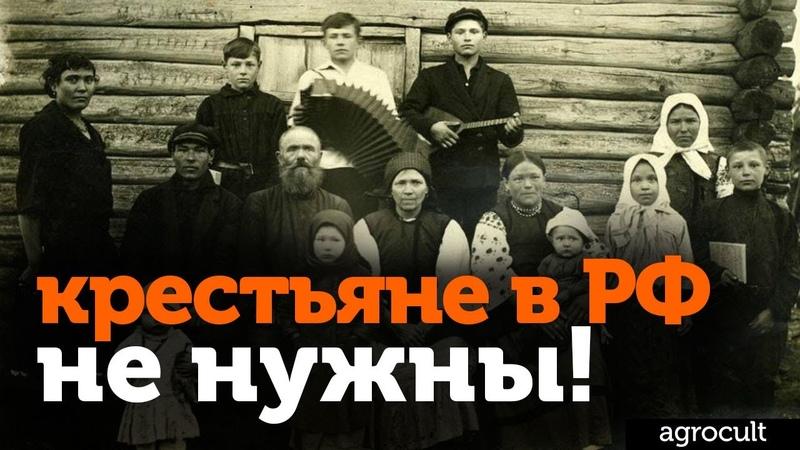 Почему в деревне нет работы? Как выживают фермеры? Нужны ли крестьяне в РФ?