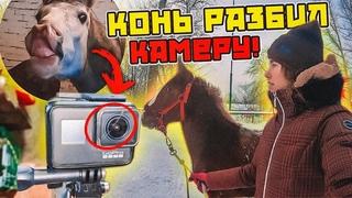 VLOG: Гуляем с жеребятами / КОНЬ РАЗБИЛ камеру...