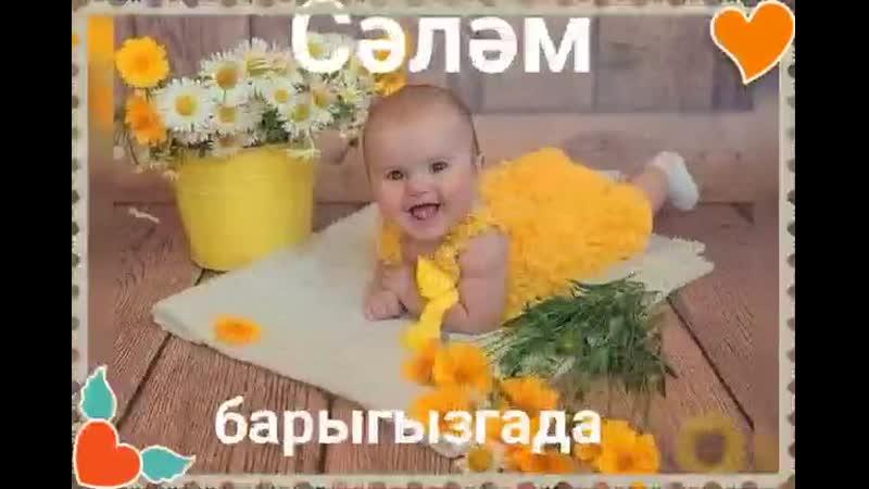 VIDEO 2020 04 11 07 48