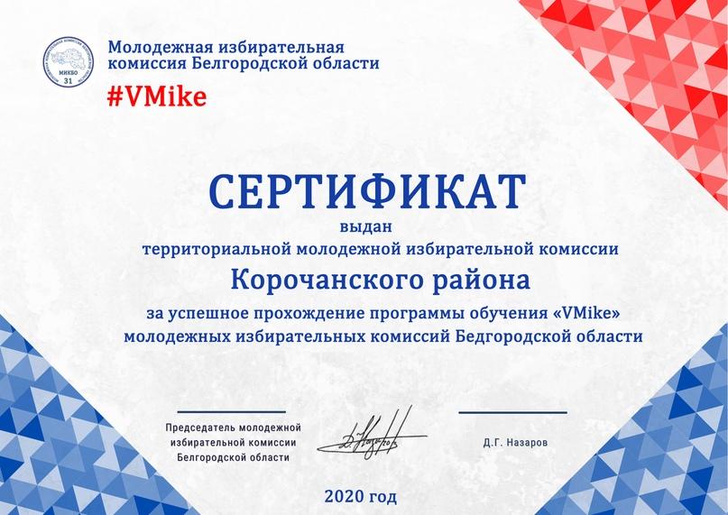 Итоги программы обучения молодежных избирательных комиссий Белгородской области «VMike», изображение №11
