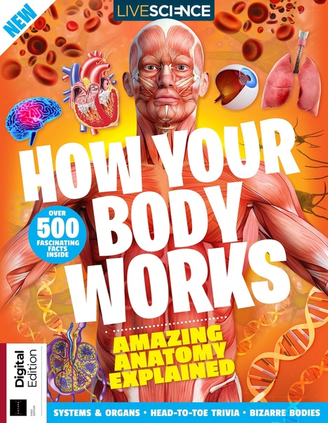 How Your Body Works-First Ed 2019