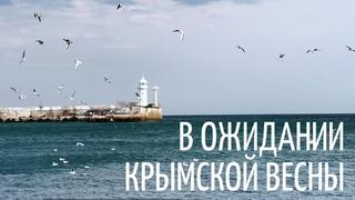 В ожидании крымской весны. Набережная Ялты