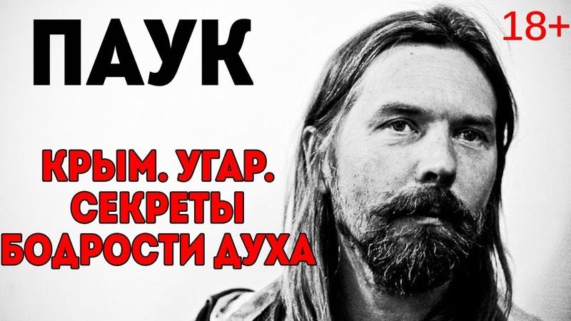 Паук Троицкий СЛЭ Крым портвейн бодрость духа Архетип