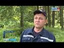 Спасатели Марий Эл выезжали на поиски грибников более 80 раз