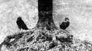 Raven Throne - Viartańnie (Chroniki Źmiainaj Ciemry) (Full Album Premiere)