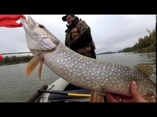 Рыбалка в Коломино часть 2.Когда рыба тупо не хочет клевать.Остаётся только набраться терпения......