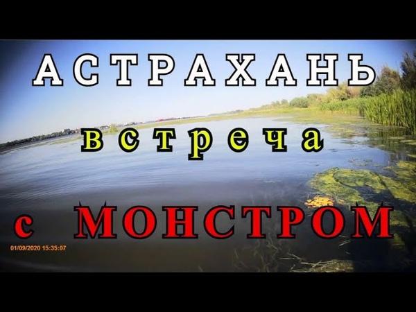 Встреча с речным монстром Рыбалка в Астрахани