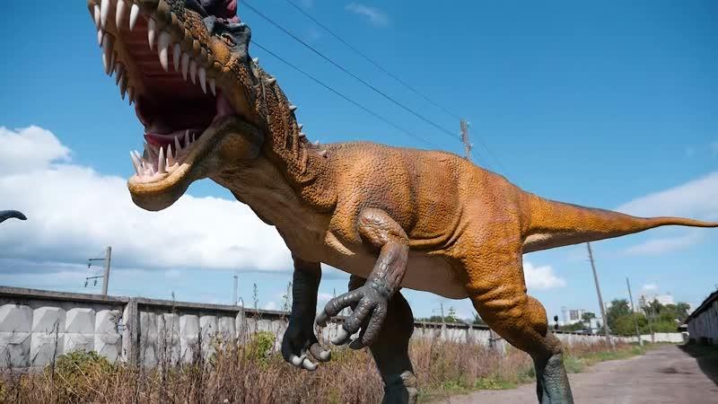 Аллозавр и трицератопс
