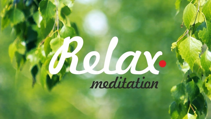 Лучший Релакс В ветках березы Музыка для сна Расслабление релаксация и медитация FullHD