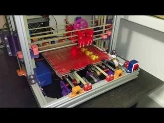 RepRap RadusT 3D printer printing 2021