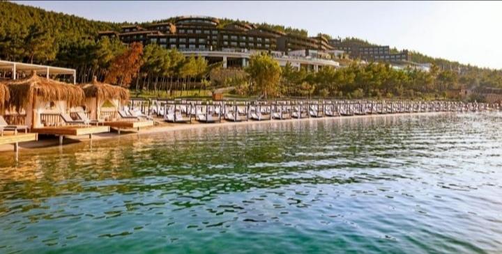 Топ отели, изображение №4