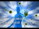 Сеанс против гриппа и ОРВИ Космоэнергетика