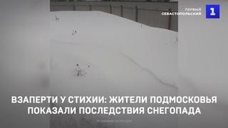 Взаперти у стихии: жители Подмосковья показали последствия снегопада