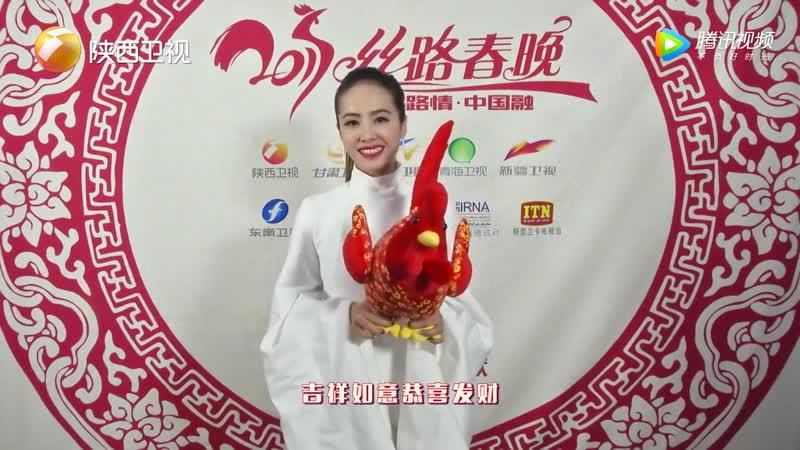 13.01.2017 - Shaanxi TV Silk Road Spring Festival, Сиань