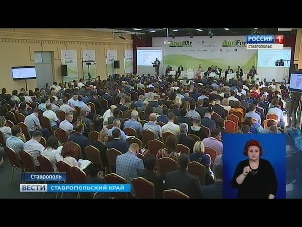 Сельхозпродукцию Ставрополья адаптируют к экспорту