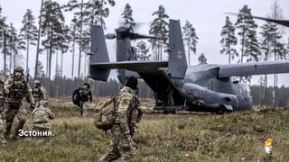 Профиль агрессора: НАТО создаёт цифровой образ российской армии