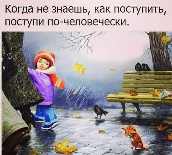 azov_fenix 🍁 Коротко о жизни в приюте!