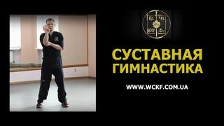 Суставная гимнастика Вин Чун Кунг Фу