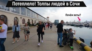 Потеплело! Толпы людей в Сочи. Сколько стоят яхты?