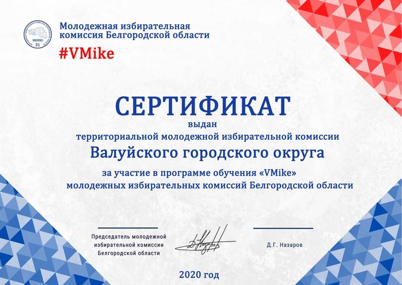 Итоги программы обучения молодежных избирательных комиссий Белгородской области «VMike», изображение №7