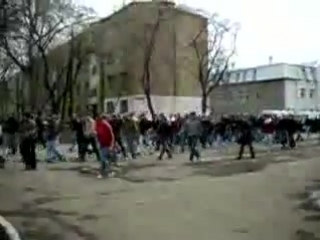фанаты Губки Боба)))