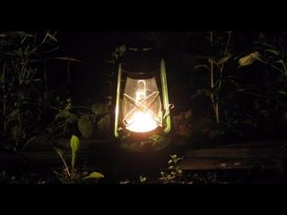 Звук Ночи у Костра, Звуки Природы - Campfire by the Lake/ Nature /  Bonfire