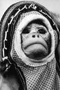 Личный фотоальбом Артема Балагуты