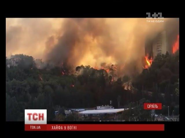 Арсен Аваков повідомив про надання Ізраїлю літаків для гасіння пожежі