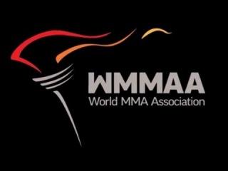 Чемпионат Европы по ММА 2016, г. Санкт Петербург, Ледовый Дворец. Второй Ринг. Прямая Трансляция.