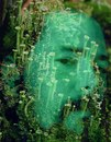 Личный фотоальбом Грома Молниева