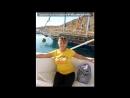 «Египет,Шарм эль шейх» под музыку Sasha Martini feat Helen Magpie - Прошу забудьУсталость, слезы, все обиды Я твояСчитаю
