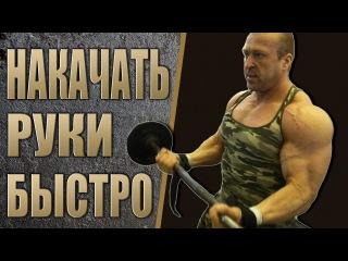 Бесплатная программа тренировок - РУКИ! Алексей Борисов