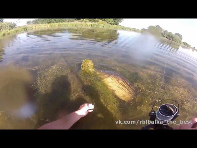 Вот за что я люблю рыбалку