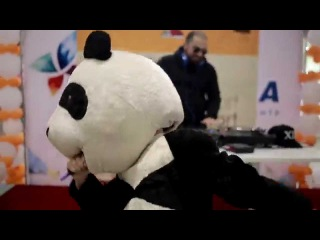 Панда покоряет вселенную!
