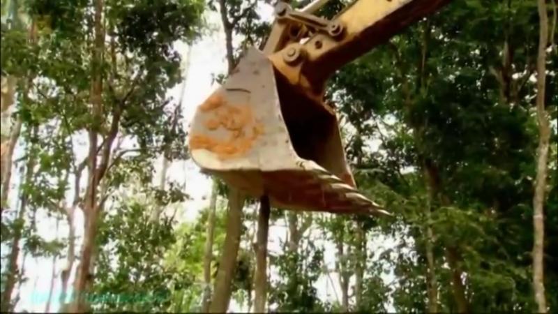 Бамазонка Золотоискатели 5 Поделись Документальный 2012