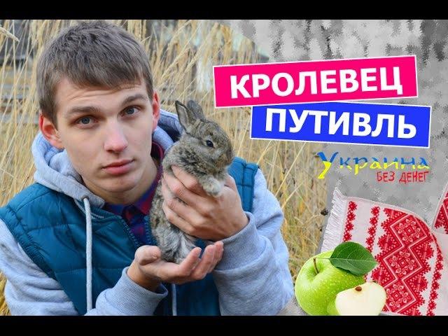 Украина без денег КРОЛЕВЕЦ и ПУТИВЛЬ выпуск 51