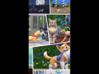 The Sims 4 Cats & Dogs: Instagram Story Clip