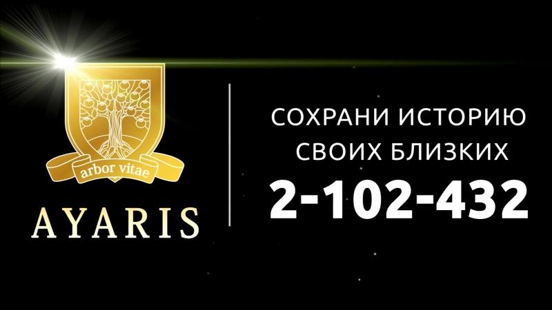 Кирюшин Максим Андреевич Аярис