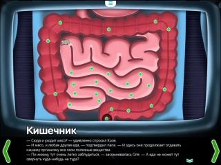 Кишечник. Строение кишечника. Познавательный мультфильм для детей