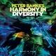 Peter Banks - Plenty to Hear in Orbit