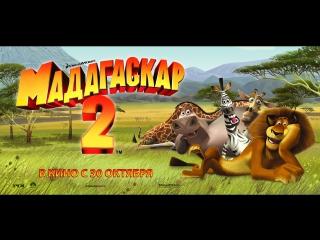 Мультфильм  Мадагаскар 2 HD