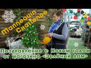 Новогодний mannequin challenge! Поздравление с Новым годом от магазина Зеленый дом (Garden ZOO)