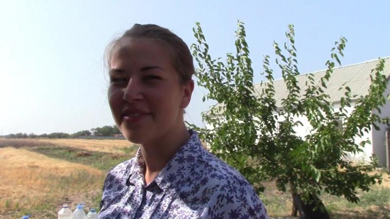 2 Инспектор Дарья Фреймут Бригантина