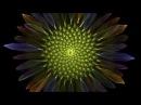 Macoto Murayama and Echoton, Sunflower , single channel video, 8'07'', 2014