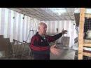 Разведение кроликов калифорнийской породы в ЛПХ Сахон Харьковская область